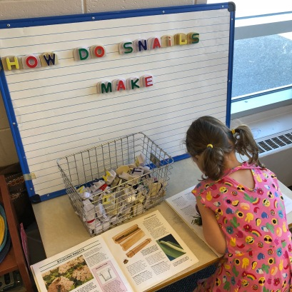 "Olivia looking through our Insect and Creepy Crawler books and using magnetic letters to spell out sentences! ""How do snails make shells?"""